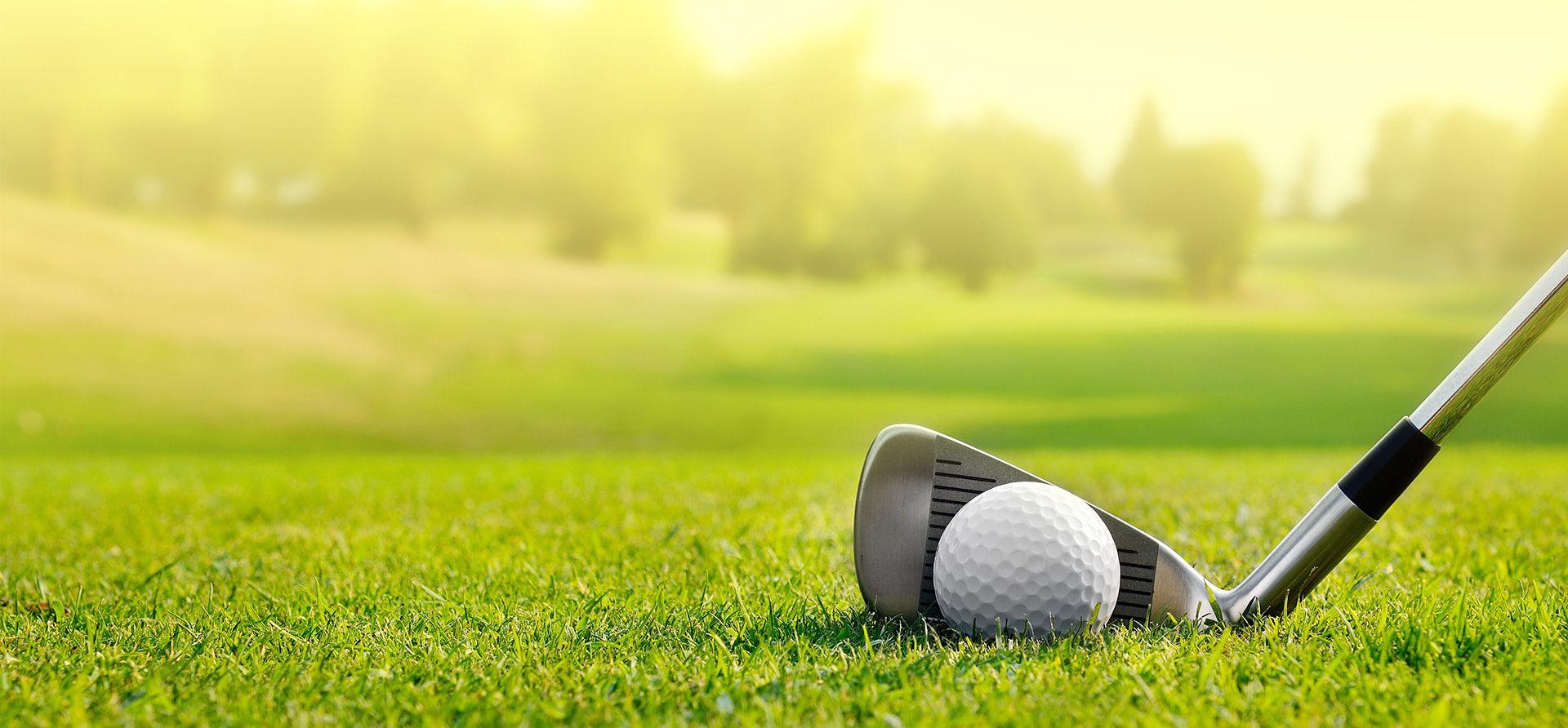 7th Golf Day